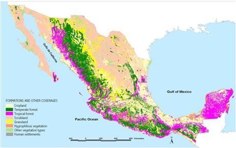 Mexico Terrenos De Trabajo Descriptivo Del Proyecto
